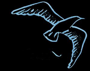 logo-alain-DEF